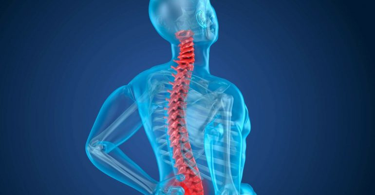 lesioni-spinali-staminali